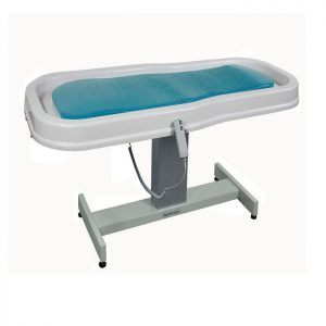 Neptune Motorized Wet Spa Treatment Table