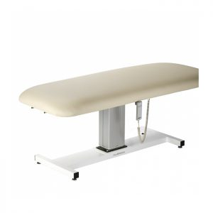 Aphrodite Motorized Wet/Dry Treatment Table